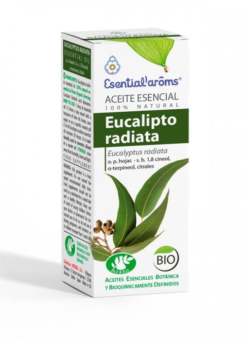 ACEITE ESENCIAL AEBBD - Eucalipto Radiata