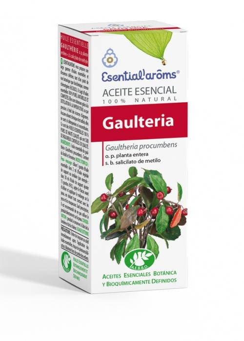 ACEITE ESENCIAL AEBBD - Gaulteria (Wintergreen)
