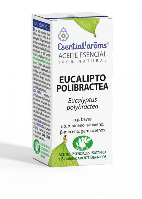 ACEITE ESENCIAL AEBBD - Eucalipto Polibractea